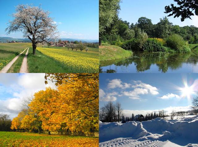 Bốn mùa ở đâu