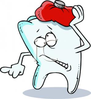 Gấu con bị đau răng