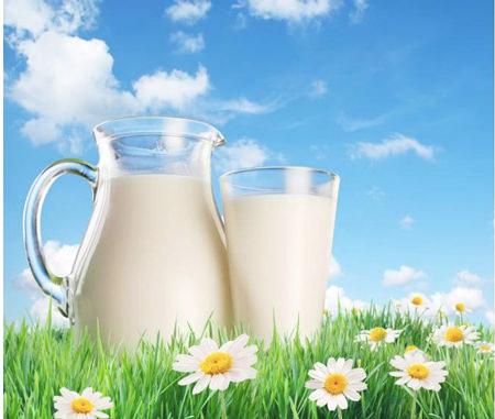 Giá trị dinh dưỡng của sữa